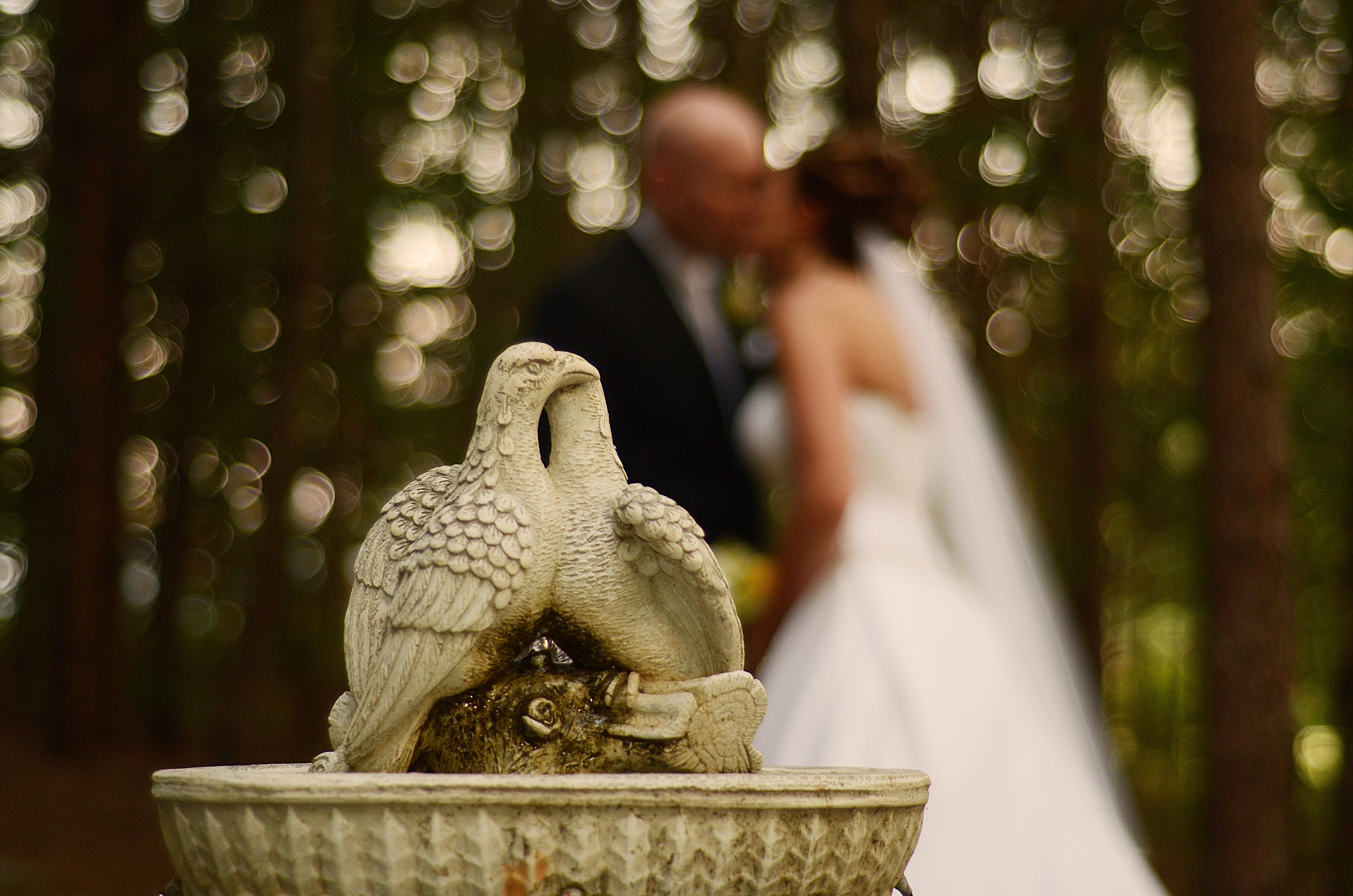 North Georgia Wedding Photographers - Artistic Photo